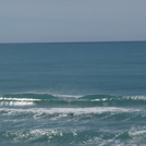 Pines - small summer swell perfection