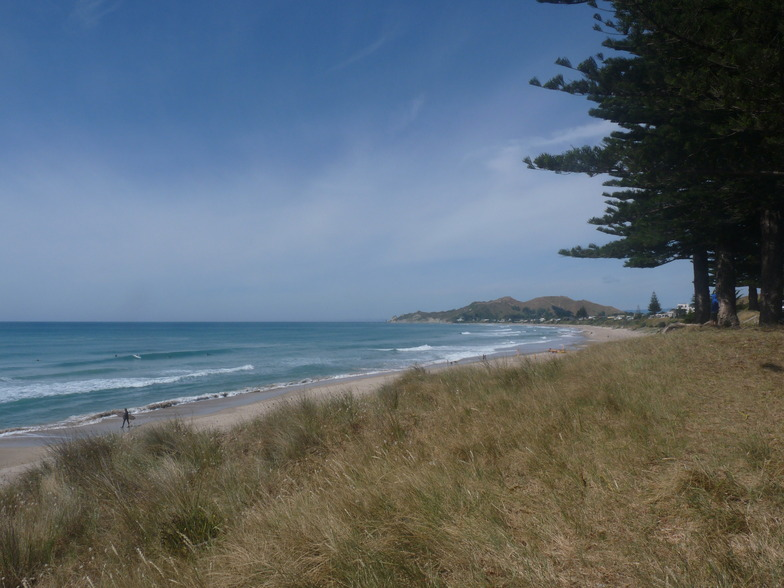Small summer swell  - Wainui, Wainui Beach - Pines
