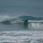 Pines - small summer swell, Wainui Beach (Pines)