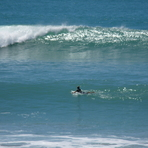 Pines - long paddle out, Wainui Beach - Pines