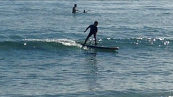 JK, Louro (Playa Area Maior) photo