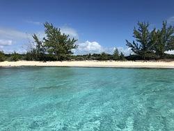 Egg Island Beach photo