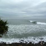 surfn Crescent Head