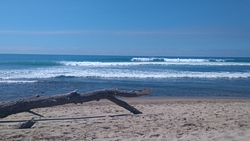 Trestles (Uppers) photo