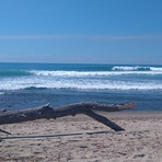 Trestles (Uppers)