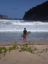 Mckenzies, Mckenzies Beach photo