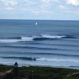 Long reef Bombie
