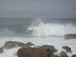 Shipsterns, Shipstern Bluff photo