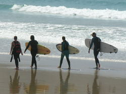 Ready to go!, Apollo Bay photo