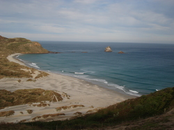 Sandfly Bay, Otago Peninsula - Sandfly Bay photo