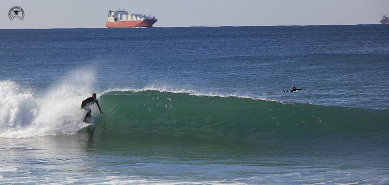 Oilies NSW Wollongong