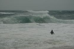 Pochet Beach-E. Orleans,MA, Nauset Beach photo