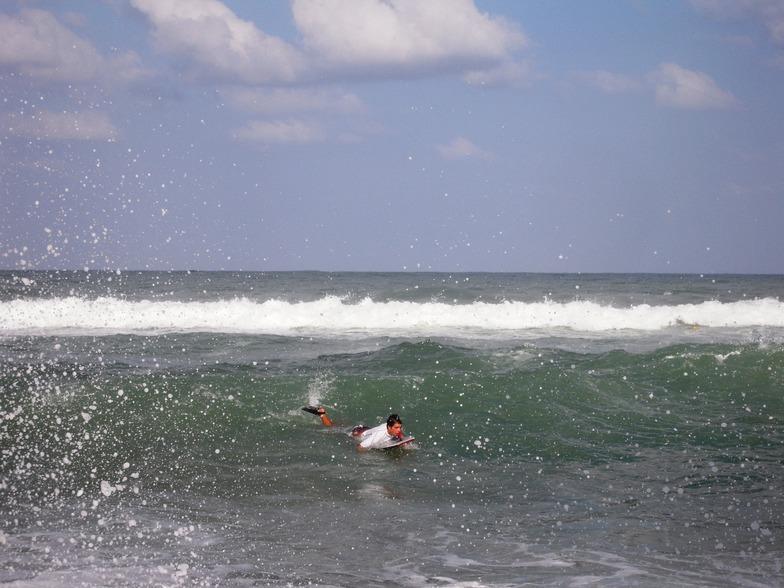 August 13,2011, Papaya (Nahriya)