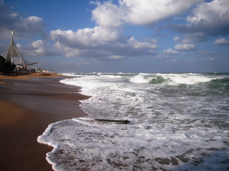 The Shoreline, Papaya (Nahriya)