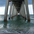 Sharky's Pier