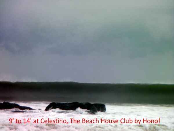 9 to 14 +, Celestino