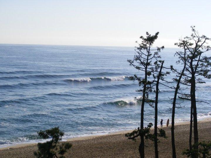 Little dribbles., Gyongpo Beach