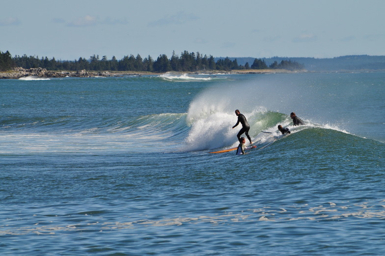 Surfer Morning, Broad Cove
