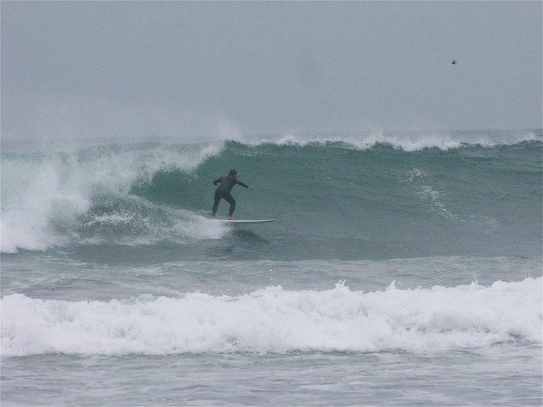Puerto Viejo way