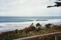 Pining Surf Club Bazza's, Wainui Beach - Pines photo