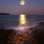Moonrise Magic, Malabar
