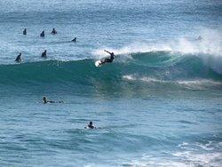 ocean reach photo