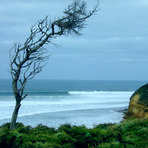 Bells Beach, Bells Beach - Rincon