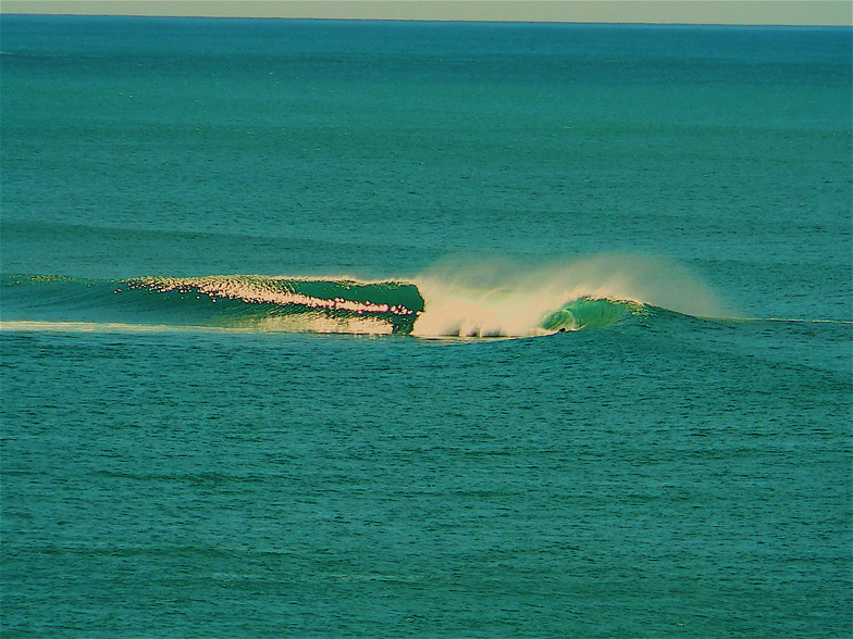 The Reef -- Sunny Coast, you know where !!
