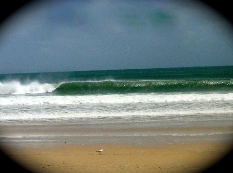 Noosa christmas day, Noosa - Sunshine Beach