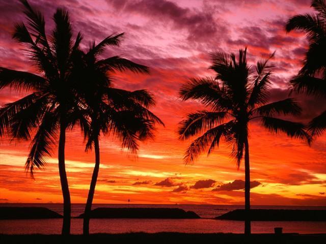 Sunrise Watch Spot Beach South California