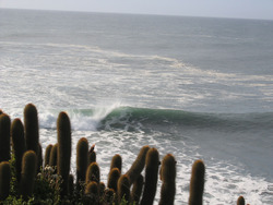 punta de lobos photo