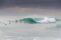 lineup surf Varazze 09/11/2011 - Anton Puttemans photo