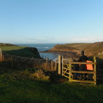 what a view, Fall Bay