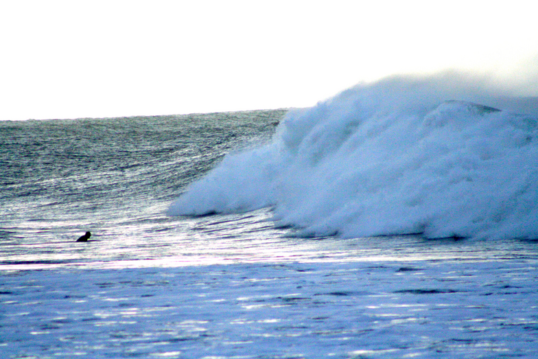 Big at Bells Beach, Bells Beach - Rincon