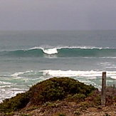 South Oz reef  '12, Victor Harbour (Shark Alley)