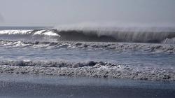 Praia de Leste photo