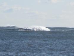 Feb 2012, Beadnell Bay photo