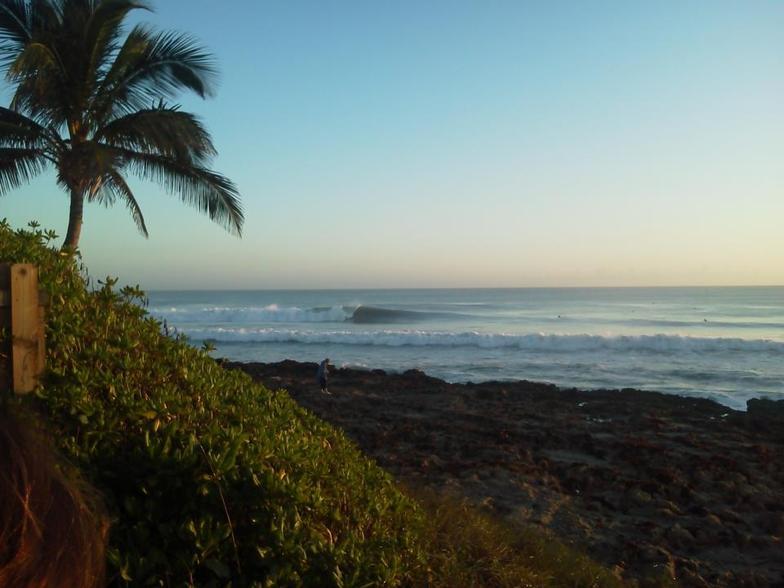 Morning Waves, Stuart Rocks
