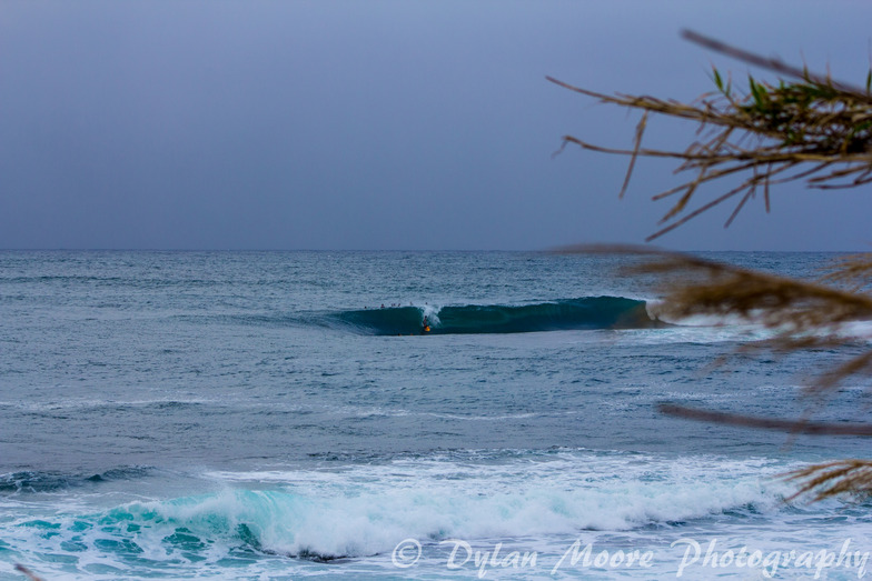 Morning Drop, Shark Island (Cronulla)