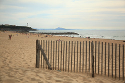 Evening light in Anglet, Anglet - Marinella photo