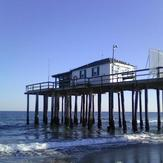 Belmar Fishing Club Pier, Belmar Fishing Pier