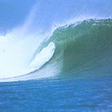 Kuta Reef Bali