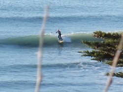 Surfing SUP at the Point, Makorori Point photo