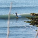 Surfing SUP at the Point, Makorori Point