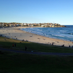 Bondi Beach Beauty