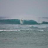 October Majestic wave, Majestics