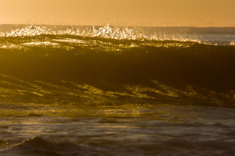 Golden walls, Friendly Beaches