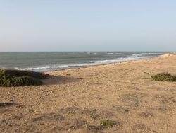 Lonely Point, Punta Gallina photo