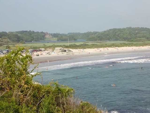 Summer grovel, Sachuest Beach (2nd Beach)