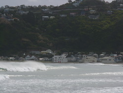 Lyall Bay Surf Club photo